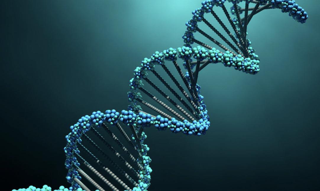 Photo of Si e zbulon prehistorinë tonë analiza e ADN-së?