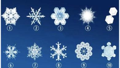 Photo of Zgjidhni flokun e dëborës që ju pëlqen më shumë dhe zbuloni diçka interesante për veten tuaj