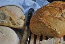 Photo of Shija, nëse virusi e sulmon, ne e rigjejmë në bukën e shtëpisë