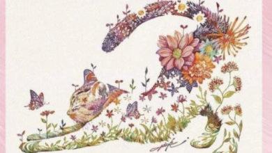 Photo of Kafsha e parë që shihni flet shumë për ju: mace apo flutur?