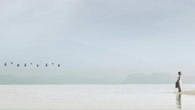 Photo of Lidhja midis atyre që lindin dhe atyre që vdesin: legjenda e ishullit Tuma