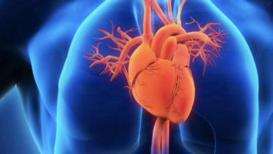 Photo of Zbulohet ritmi cirkadian i qelizave të zemrës, ja pse ata që punojnë natën janë më të rrezikuar nga sëmundjet